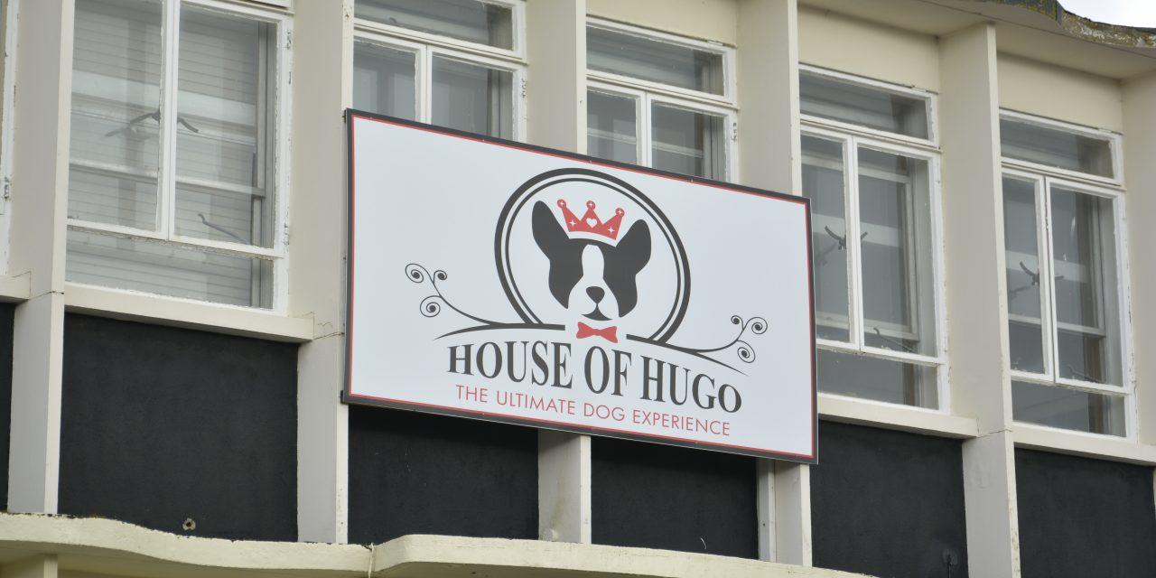 Backstage At The House Of Hugo – The Original Dog Hotel