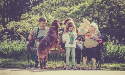 3 Reasons Why a Dog Can Brighten Any Household